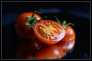 tomates contre le soleil